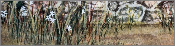 Paint Watercolor Grass