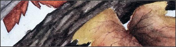 Watercolor Dry Brush